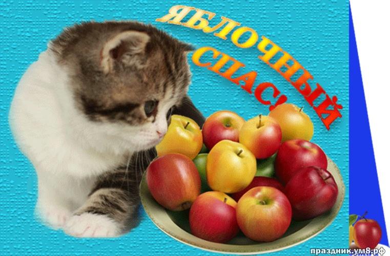 Скачать достойную открытку на яблочный спас, красивое поздравление в прозе! Поделиться в вк, одноклассники, вацап!