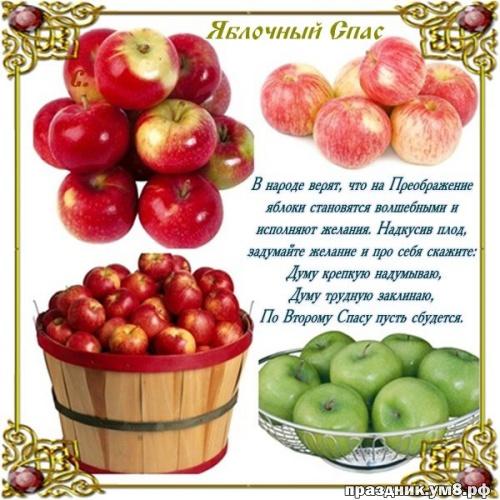 Найти откровенную картинку на яблочный спас, с праздником, дорогие! Отправить в instagram!