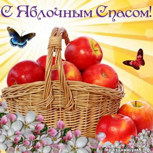 Скачать бесплатно нужную открытку на яблочный спас, с праздником, дорогие! Переслать в пинтерест!